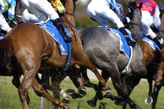 Horserace run 01. Close up of racehorses running Stock Photography