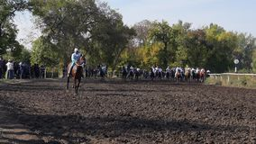 Horseraces in slow motion Boys compete in horse rasing. Horse riding competition in slow motion jockeys compete in horseraces stock video