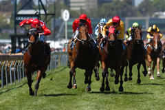 Horseracing 021 Images libres de droits