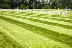 Horseracing track Stock Image