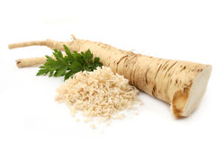 horseradish Obrazy Stock