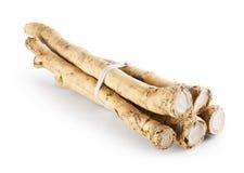 horseradish Imagens de Stock