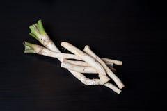 Horseradish Royalty Free Stock Image