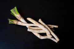 Horseradish Royalty Free Stock Images