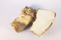 Horseradish. Fresh, flavorful horseradish, isolated on whte background Royalty Free Stock Photos