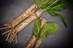 Horseradish i horseradish liście, czarny bazalta kamienia tło fotografia royalty free