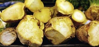 Horseradish korzeń Zdjęcia Stock