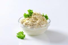 Horseradish kumberland zdjęcie stock
