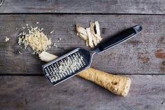 Horseradish root. Royalty Free Stock Photo