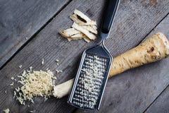 Horseradish root. Stock Photos