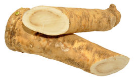 Horseradish Root Stock Photos