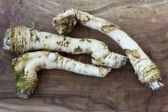 Horseradish Roots. Horseradish root on wooden background Stock Photography
