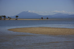 Horseride della spiaggia di mattina Immagini Stock