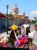 Horseride Granada cathedral Stock Image