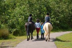Horseride van kinderen stock fotografie