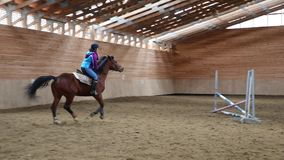 Horserider是行使室内 股票视频