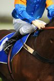 Horserider Stock Image