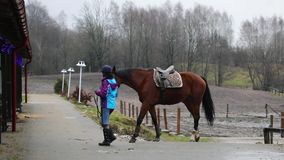 The horserider is going with horse. For training outdoors stock video footage