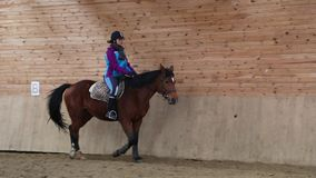 Horserider ist das Trainieren Innen stock video