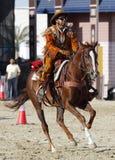A horserider performs at Maraee 2014, Bahrain Royalty Free Stock Image
