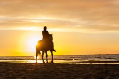 Horseriding at the beach on sunset background. Multicolored outd Royalty Free Stock Photography