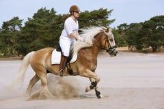 Horseriding i dyerna Royaltyfria Bilder