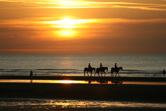 Horseriding in the sunset. Sunset on the seashore with silhouettes or people riding horses and walking on the coast royalty free stock photography