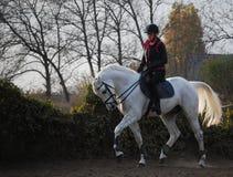 horseridingsolnedgång Arkivbild
