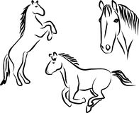 Horses. Different drawings of horses in black royalty free illustration
