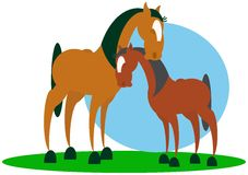 Horses. Family computer vector illustration Royalty Free Stock Photography