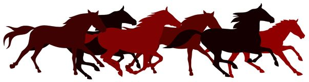 Horses vector illustration