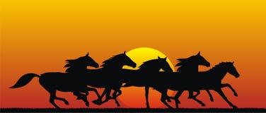 Horses. Abstract illustration of running horses stock illustration