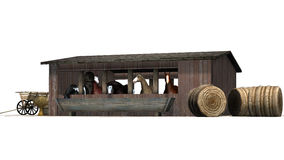 Horses in barn - isolated on white background Stock Photography