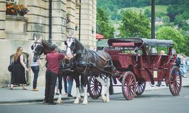Horses  in Bath city. Two horses pulling a carriage in Bath city waiting for the tourist Stock Images