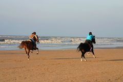 Horses on the beach. Two riders galloping on the beach Stock Photos