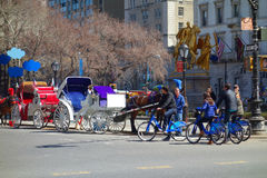 Horses and Bikes in New York City Stock Images