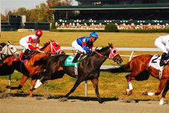 Heading down the stretch. Horses break for the stretch run in front of a packed house at Keeneland Race Tracl Stock Photography