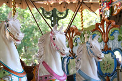 Horses on a Carousal. Stock Photography