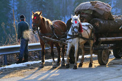 Horses and carriage Stock Photo