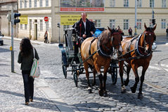 Horses and Carriage, Central Prague, Czech Republic Royalty Free Stock Images
