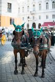 Horses and carriage, Vienna Royalty Free Stock Photos