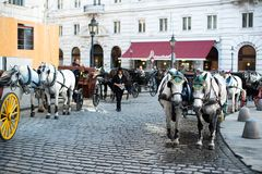Horses and carriage, Vienna Stock Photos