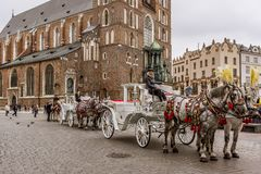 Horses an carriages in front of the cathedral in Krakow royalty free stock image