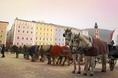 Horses and carriages in Salzburg Stock Image