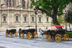 Horses and carts outside of Seville cathedral Stock Images