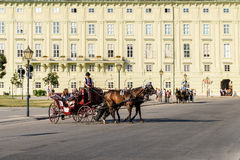 Horses and Classic Carriage Transport at Hofburg Palace Royalty Free Stock Images
