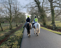 Horses country lane Royalty Free Stock Images
