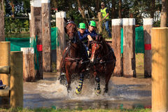 Horses cross country. BREDA, HOLLAND - SEPT 3: Multiple horses during yearly cross country contest at Outdoor Brabant, formerly Breda Hippique on September 3 Stock Image