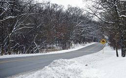 Horses Crossing Road. Somewhere in Northern Illinois State, USA. Winter Season Stock Photography