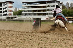 Horses derby. Photos of the race horses at a time around the barrels royalty free stock photos